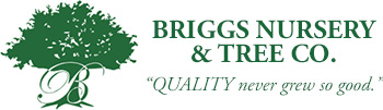 Briggs Bursery & Tree Co.
